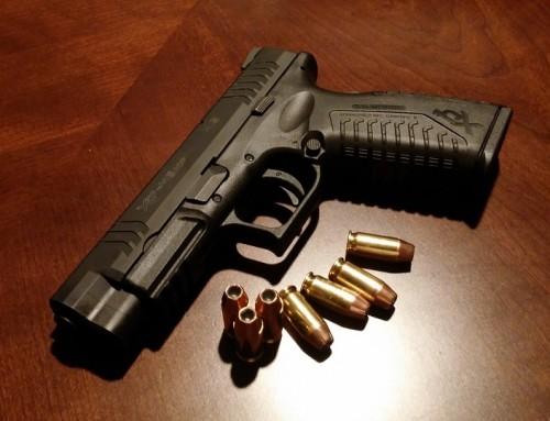 New: Gun safety program
