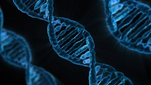 Is Alzheimer's in my Genes? @ Carlsbad City Library | Carlsbad | California | United States