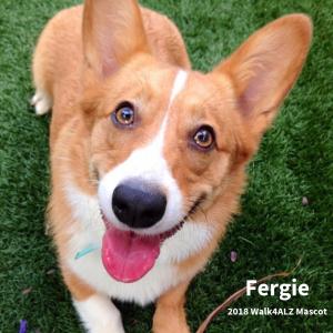 Fergie walk4alz pet mascot