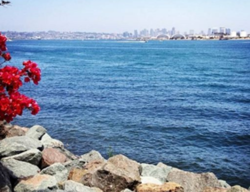 20 Beautiful places to Walk4ALZ in San Diego County